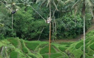 Bali River Pool Swing